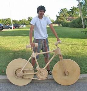 450_woodbike
