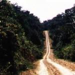 Estado de la pista TransAmazónica